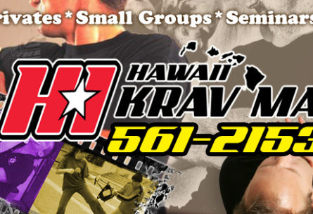 hawaii-krav-maga_self-defense-martial-arts_blog_what-is-krav-maga